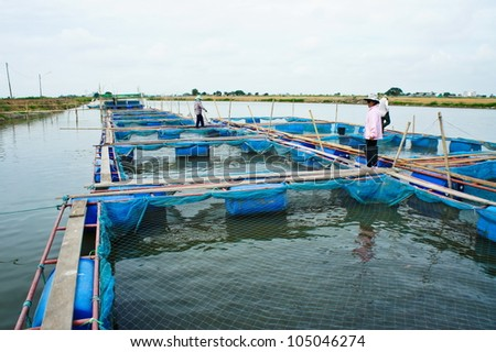 Fish farm located in thailand country