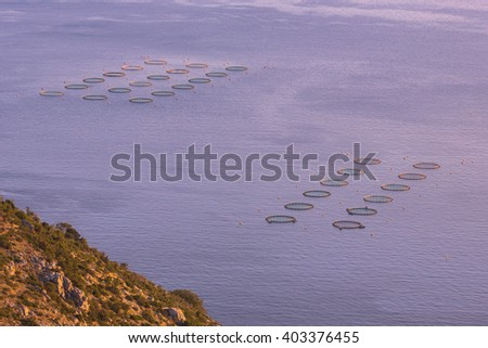 Fish farm nets in open sea overview seen from above. Some of the basins are covered with green nets to prevent the fish from jumping out. - stock photo