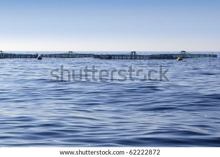fish farm on blue ocean sea horizon pisciculture - stock photo