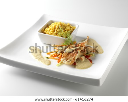 Fish fillet in Porto sauce - stock photo
