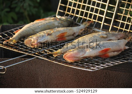 Fish fried on coals