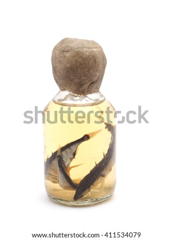 fish in a glass jar on a white background - stock photo