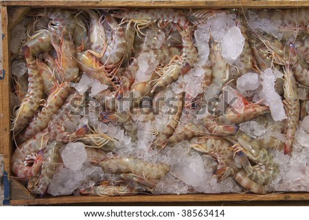Fish in ice at the fish market - stock photo