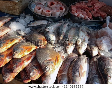 stock-photo-fish-market-in-hpa-an-myanma