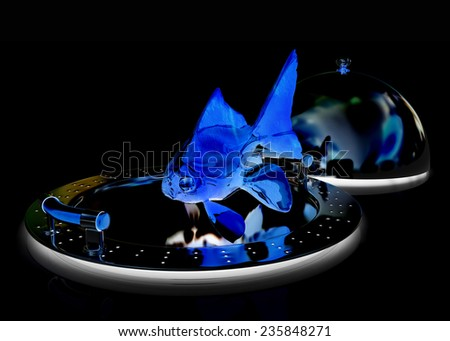 fish on a restaurant cloche on a black background - stock photo