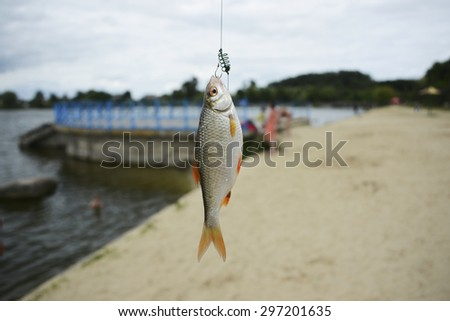 fish on the hook - stock photo