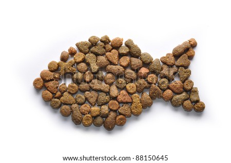 fish shaped cat food isolated on white - stock photo