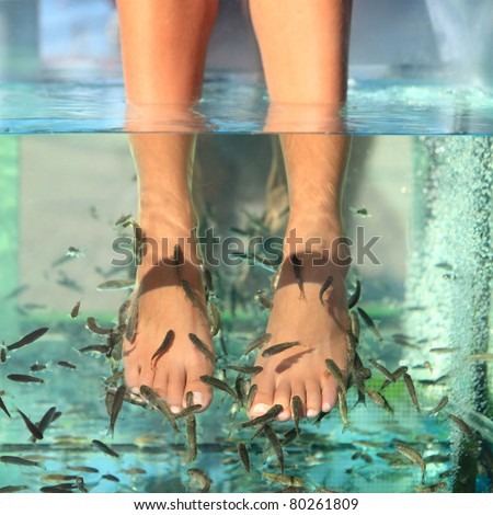 Feet massage water woman stock photos images pictures for Fish foot spa