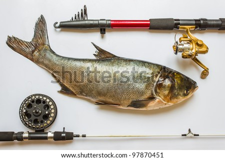 fish with rods and tackle for fishing
