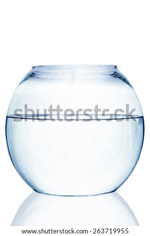 Fishbowl on white background - stock photo