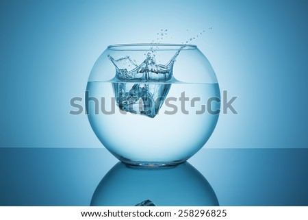 fishbowl with water splash impact on blue background - stock photo