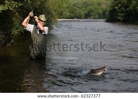 Fisherman catches of salmon (pink salmon) on the river. - stock photo