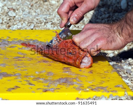 Fisherman cleaning fish on yellow board