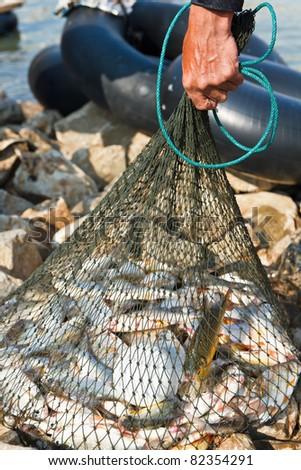 Fisherman hold net - stock photo
