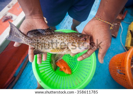 fisherman holding grouper fish on the fishing boat - stock photo