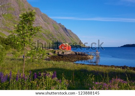 Fisherman's cottage with jetty on Lofoten Islands, Norway - stock photo