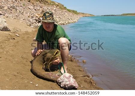 fisherman with a big catfish - stock photo