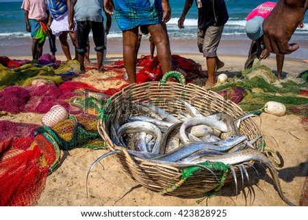 Fishermen going to catch a fish in the sand in a large basket. Sri Lanka - stock photo
