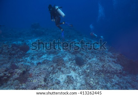 Fishes, Scuba divers and coral in tropical reef, Layang Layang