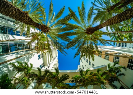 Fisheye view of beautiful Miami Beach with palm trees and art deco architecture.