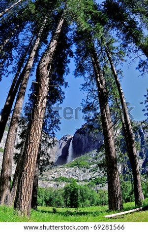 Fisheye view of Yosemite Falls framed by some trees - stock photo