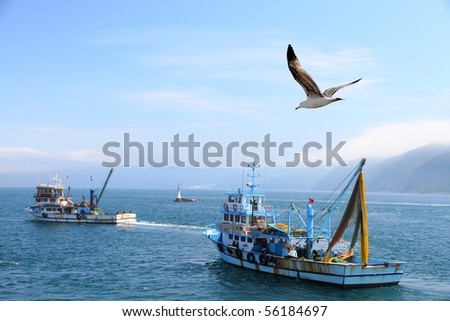 fishing boat on the Bosporus,surrounded  by seagulls with a lighthouse in the background , in Turkey - stock photo