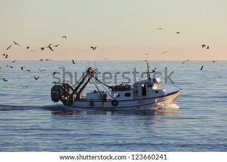 Fishing boat returning to home harbor with lots of seagulls - stock photo