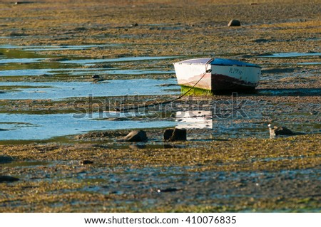 Fishing boat stranded at low tide. Mauritius Island - stock photo