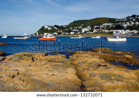 Fishing boats in Island bay in Wellington, New Zealand. - stock photo