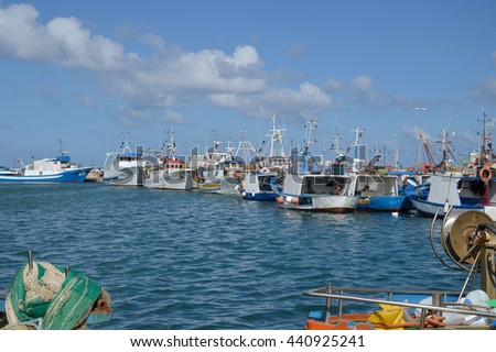 Fishing boats moored in the basin of the port of Trapani in Sicily