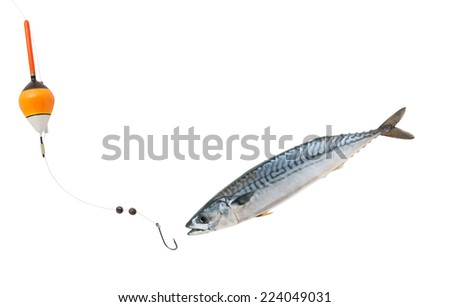 Fishing concept, fish hook and float with mackerel fish isolated on white - stock photo
