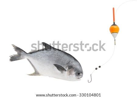 Fishing concept, fish hook, float and permit fish fish isolated on white background - stock photo