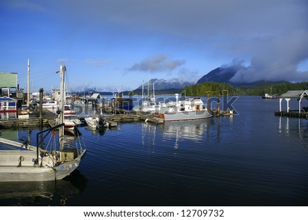 Fishing dock in Tofino on the Vancouver Island, with yachts and boats anchored. - stock photo