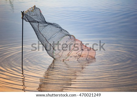 Coop stock photos royalty free images vectors for Live fish basket
