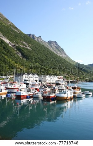 Fishing village at Lofoten