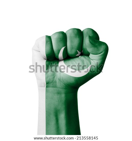 Fist of Pakistan flag painted - stock photo