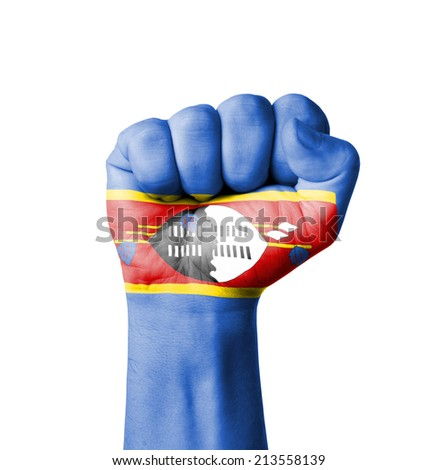 Fist of Swaziland flag painted - stock photo