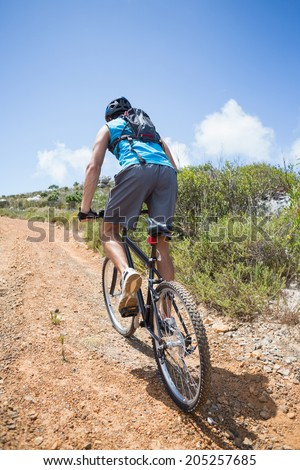 Fit man cycling up mountain trail on a sunny day