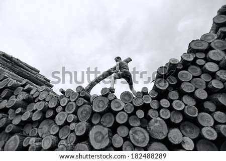fit man on top of large pile of logs, pushing heavy log  - stock photo