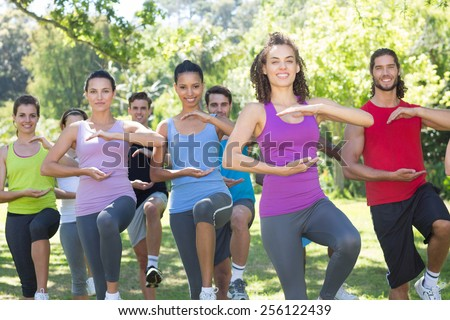 Fitness group doing tai chi in park on a sunny day - stock photo