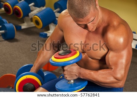 Fitness - powerful muscular bodybuilder lifting weights - stock photo