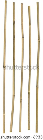 Five dried ornamental bamboo sticks. Very high-res. Clean edges, no shadows. - stock photo
