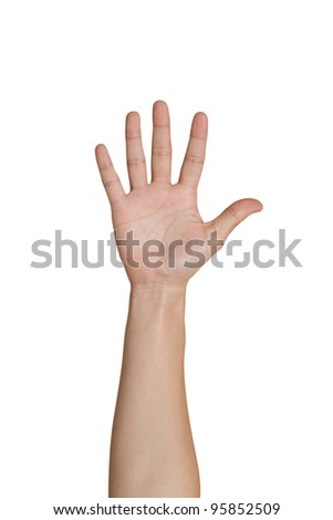 Five fingers of female hand - stock photo