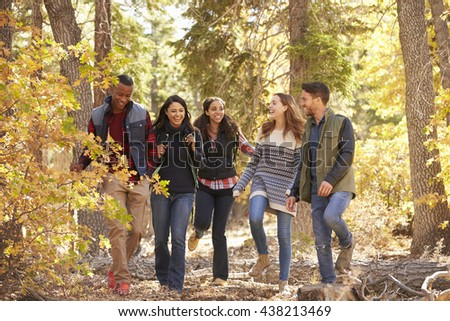 Five friends enjoying a hike in a forest, California, USA - stock photo