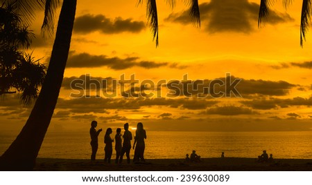 Five friends lesbian girl standing on tropical island enjoying glass wine vine or champagne at sunset sky with dramatic clouds sun rays on background Party team group with alcohol drink Under palm