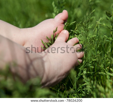 Five month baby foot on green grass - stock photo