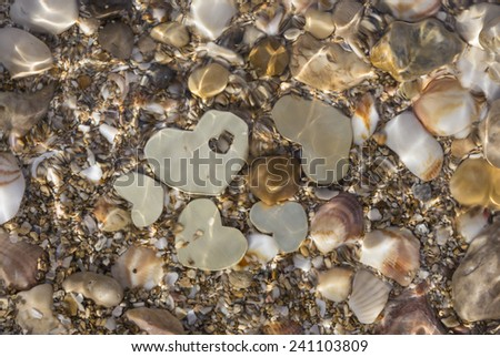Five small metallic heart shapes are placed in shallow water with seashells and sand. The water ripples. - stock photo