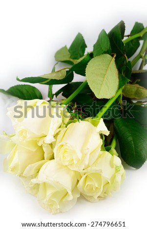 Five white roses. Isolated on white - stock photo