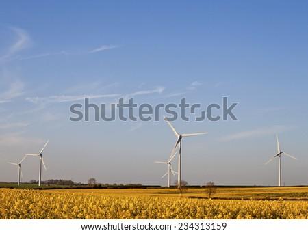 Five Wind Turbines at Yellow Rapeseed Field in Burton Latimer, United Kingdom - stock photo