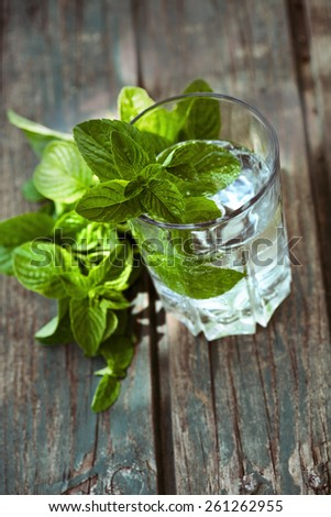 Fizzy summer soda drink with mint. Mint drink refreshment - stock photo